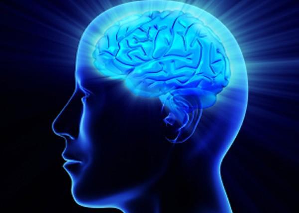 Conhecimento Cerebro